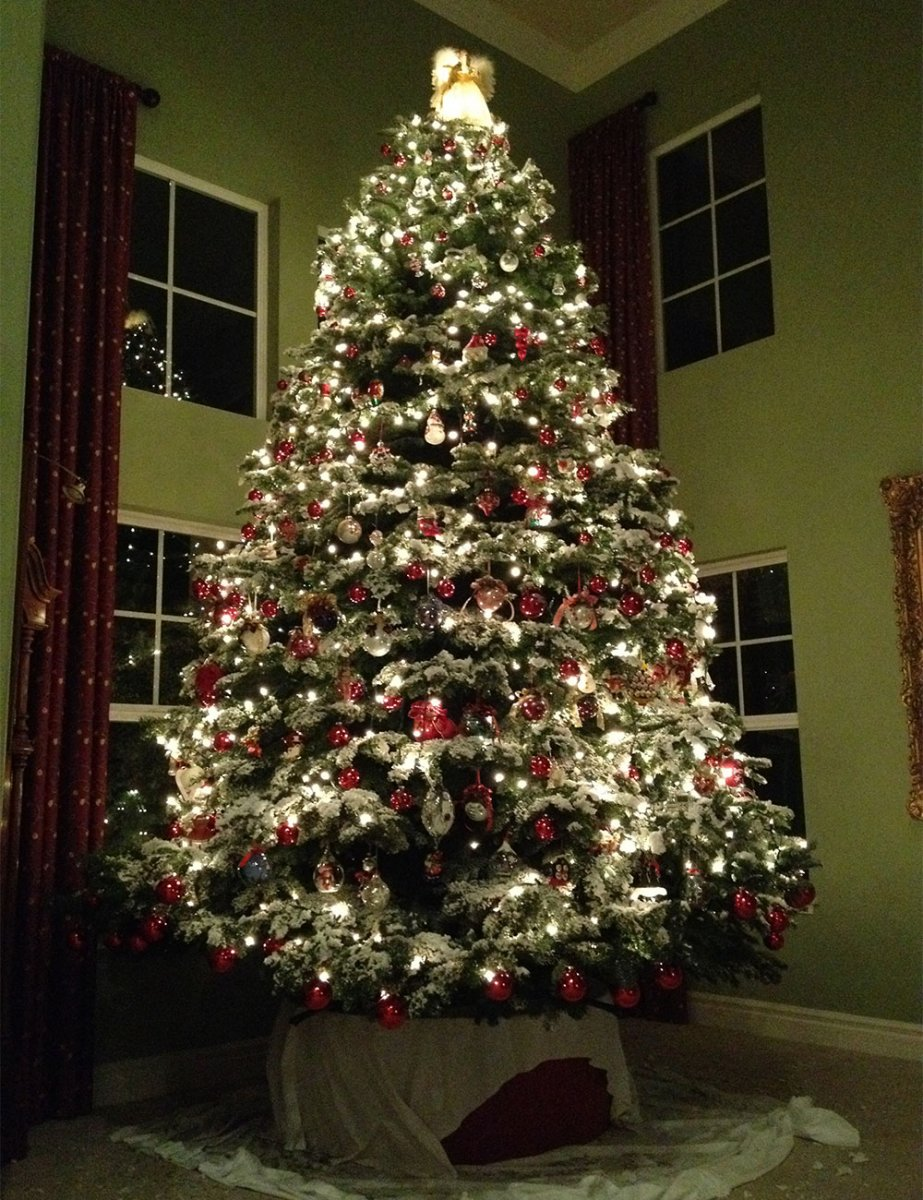 Frosty\'s Forest Christmas Trees Lots in Yorba Linda, Chino Hills ...